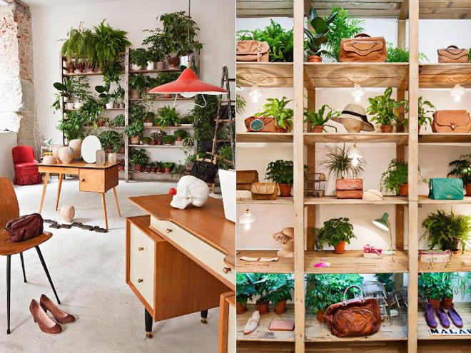 Plantas indoor decorando a casa com verde blog de - Estantes para plantas ...