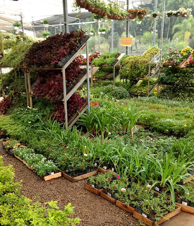 garden_center2